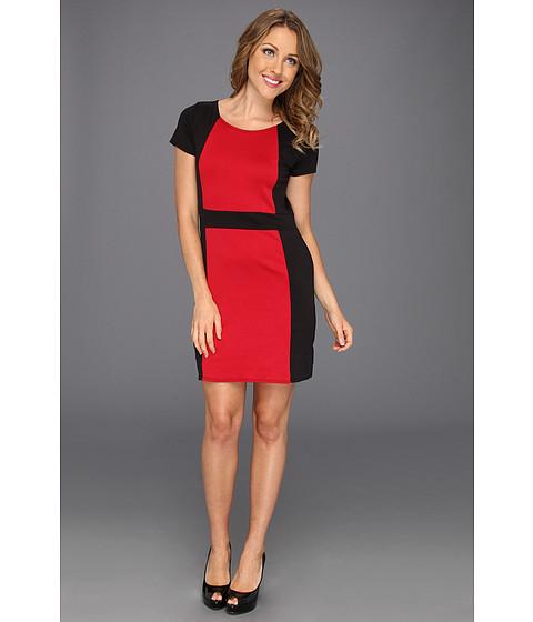 Rochii Gabriella Rocha - Hayley Dress - Black/Red